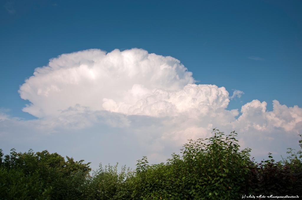 http://www.huertgenwaldwetter.de/images/Bilder/Berichte/072013/20.jpg