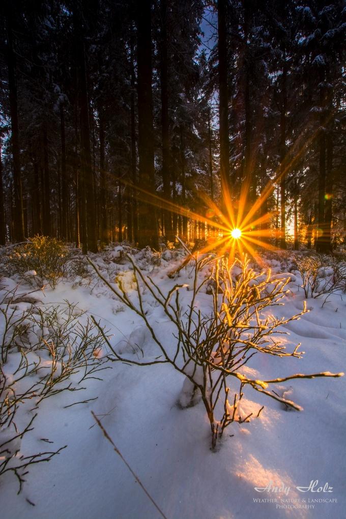Der winter 2015 2016 in der rureifel und im hohen venn for Boden winter 2016